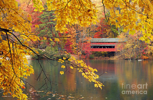 Photograph - Covered Bridge In Autumn by Larry Ricker