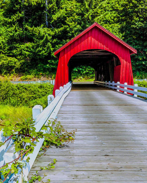 Wall Art - Photograph - Covered Bridge by Nancy Marie Ricketts