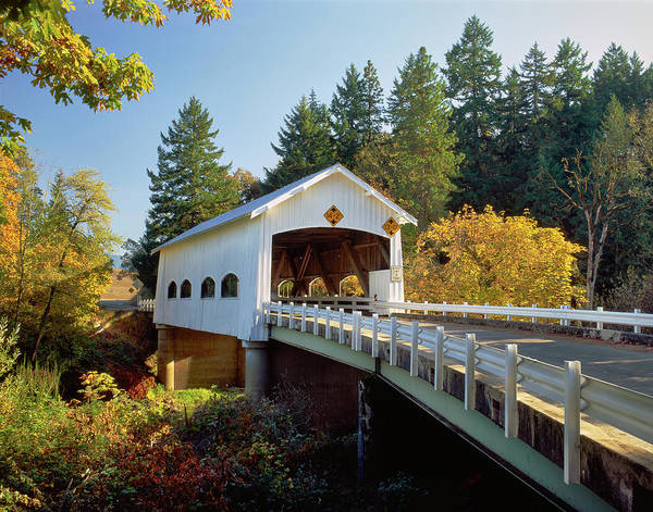 Douglas County Wall Art - Photograph - Covered Bridge Over A River, Rochester by Panoramic Images