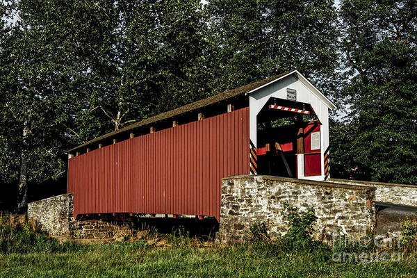 Wall Art - Photograph - Covered Bridge by Timothy Clinch