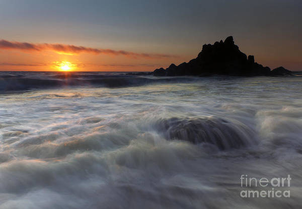 Oregon Coast Photograph - Covered by Mike  Dawson