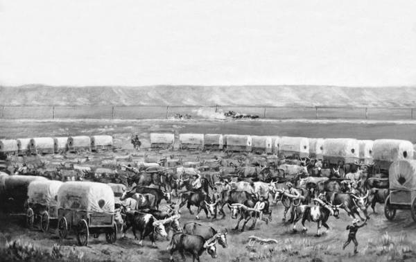 Nebraska Photograph - Covered Wagon Corral by W. H. Jackson
