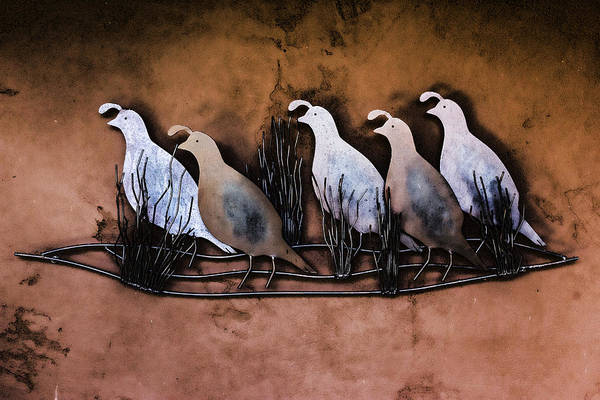 Digital Art - Covey Of Quail by Photographic Art by Russel Ray Photos