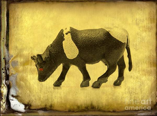 Wall Art - Photograph - Cow Figurine by Bernard Jaubert