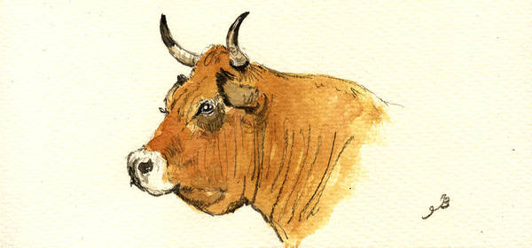 Study Painting - Cow Head Study by Juan  Bosco