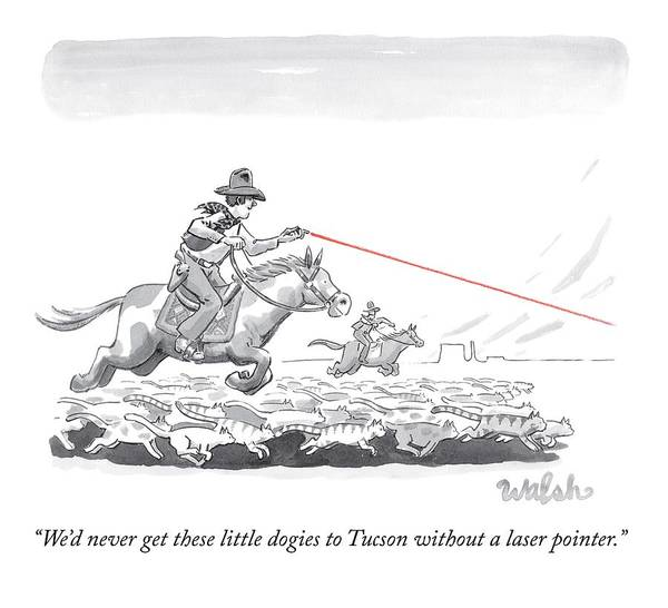 Little Drawing - Cat Herders Use A Laser Pointer by Liam Walsh