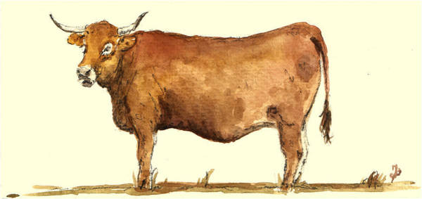 Cows Wall Art - Painting - Cow by Juan  Bosco