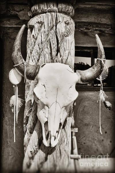 Photograph - Cow Skull by Bryan Mullennix