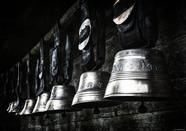 Photograph - Cowbells by Ryan Wyckoff