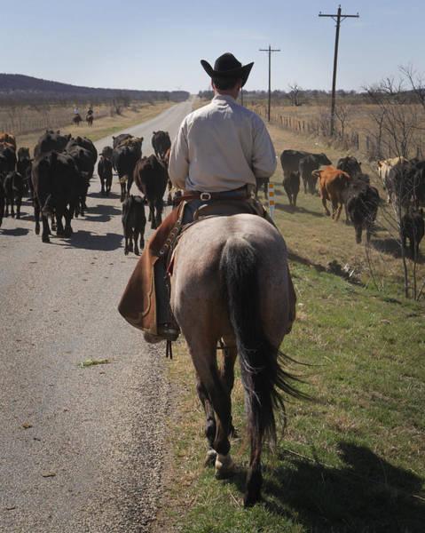Photograph - Cowboy Driving by Diane Bohna