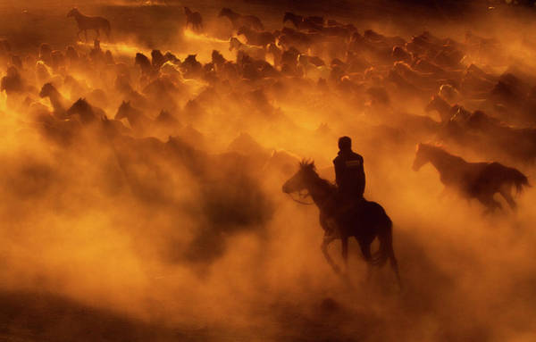 Golden Photograph - Cowboy by Feyzullah Tunc