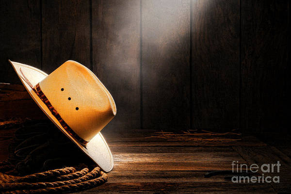 Diffuse Photograph - Cowboy Hat In Sunlight by Olivier Le Queinec