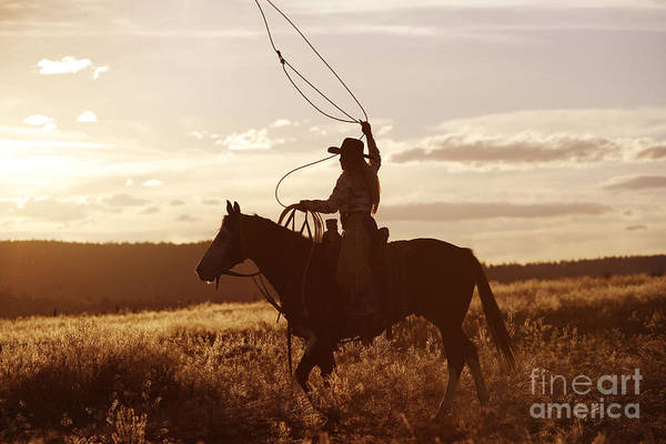 Photograph - Cowgirl Riding Quarter Or Paint Horse by M Watson