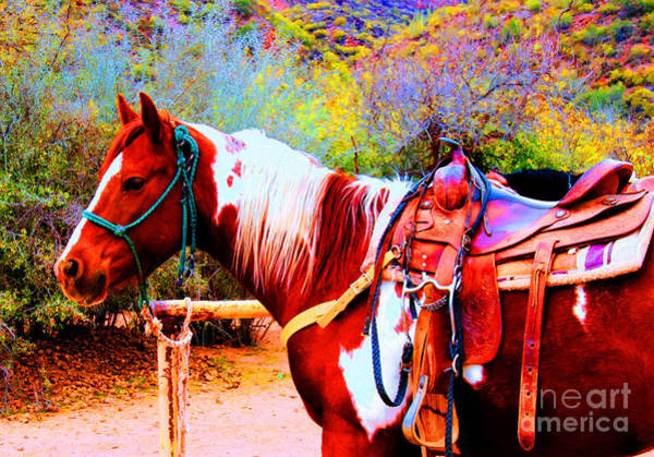 Photograph - Cowgirl Up by Tap On Photo