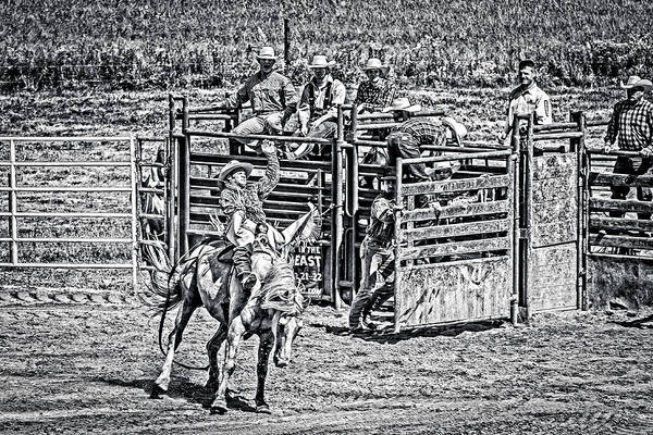 Photograph - Cowpoke Audience Black And White by Eleanor Abramson
