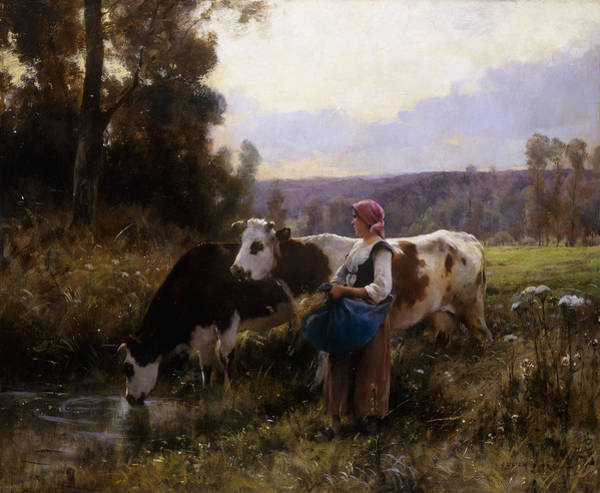 Riverbank Painting - Cows At The Watering Hole by Julien Dupre