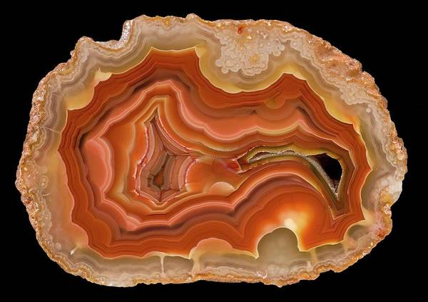 Wall Art - Photograph - Coyamito Agate by Natural History Museum, London/science Photo Library