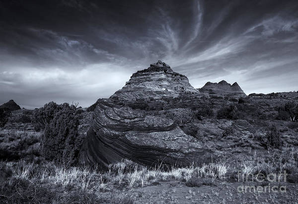 Coyote Photograph - Coyote Buttes Cloud Explosion by Mike  Dawson