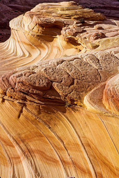 Coyote Buttes Pattern In Nature Art Print