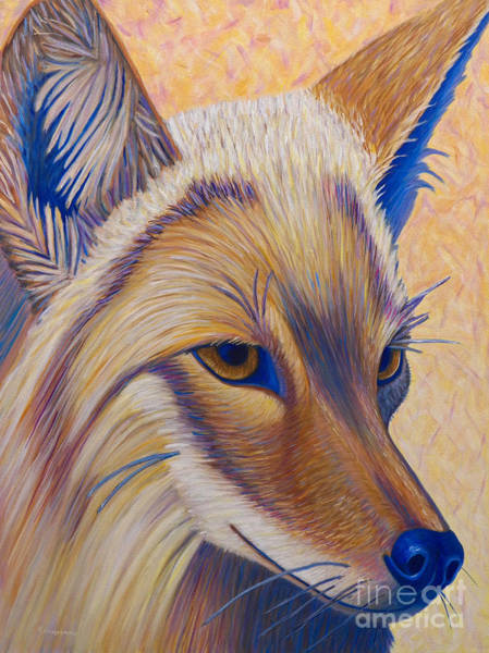 Coyote Painting - Coyote Summer by Brian  Commerford