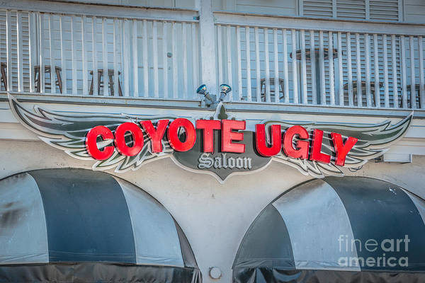 Ugly Photograph - Coyote Ugly Key West - Hdr Style by Ian Monk