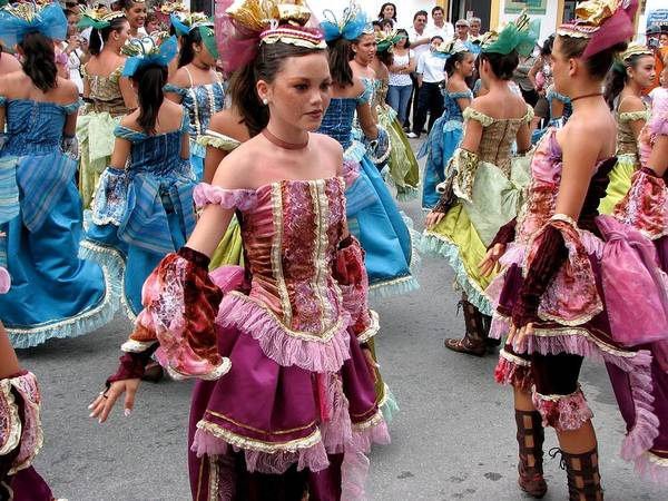 Photograph - Cozumel Carnaval 2 by Keith Stokes
