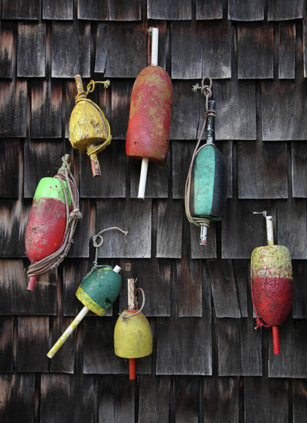 Cedar Tree Photograph - Crab Pot Floats by Photo By Wayne Bierbaum; Annapolis, Maryland