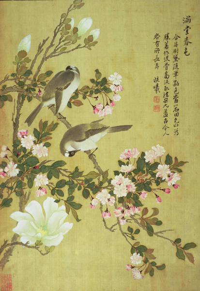 Seal Photograph - Crabapple, Magnolia And Baitou Birds Ink And Colour On Silk by Ma Yuanyu