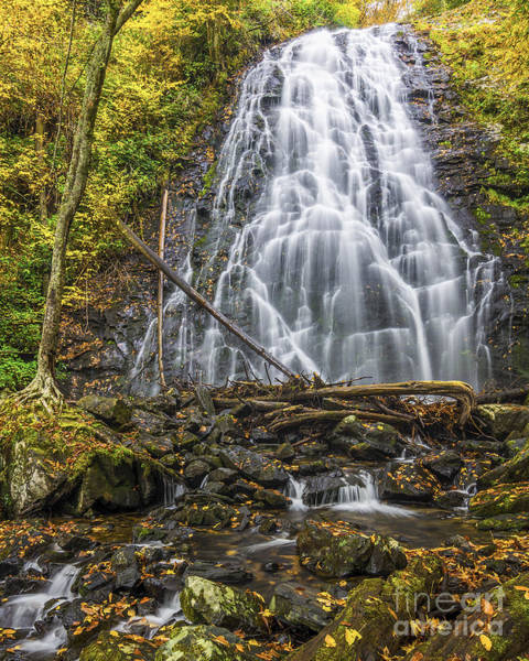 Wall Art - Photograph - Crabtree Falls In Yellow by Anthony Heflin