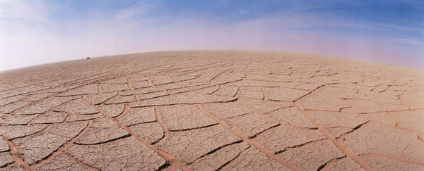 Sahara Photograph - Cracked Mud by Sinclair Stammers/science Photo Library