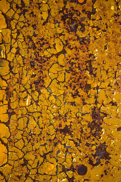 Dent Photograph - Cracked Yellow Paint by Garry Gay