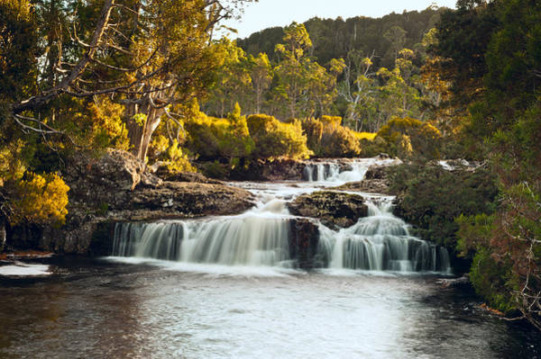Photograph - Cradle Mountain Waterfall by U Schade