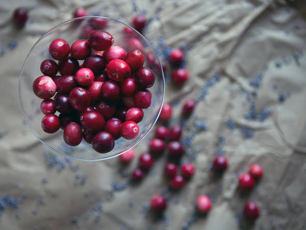 Wall Art - Photograph - Cranberries And Lavender Buds by Rebecca Cozart