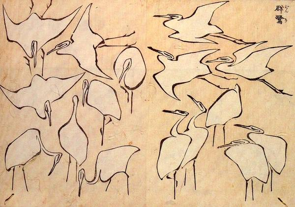 Hokusai Wave Wall Art - Drawing - Cranes From Quick Lessons In Simplified Drawing by Philip Ralley