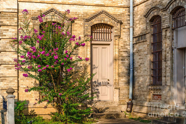 Wall Art - Photograph - Crape Myrtle And Gonzales County Jail Museum by Silvio Ligutti