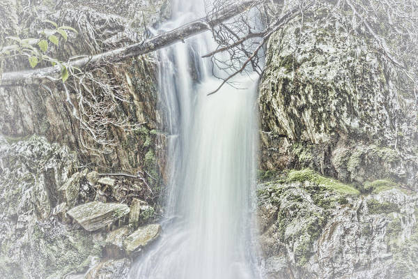 Photograph - Crater Falls In Tasmania by Elaine Teague