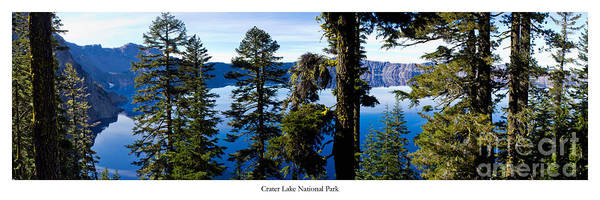 Crater Lake Photograph - Crater Lake Through Pines by Twenty Two North Photography