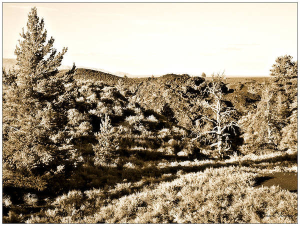Photograph - Craters Of The Moon1 by Susan Kinney