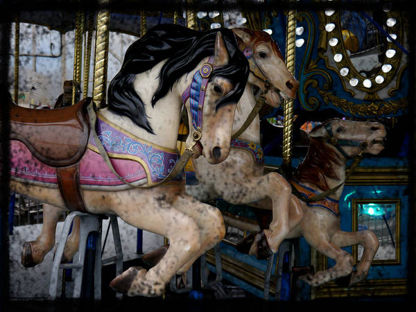 Crazy Horse Photograph - Crazy Horses 2 by Richard Reeve
