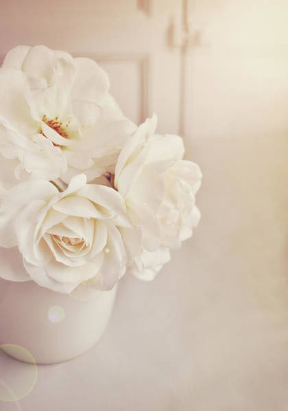 Randle Photograph - Cream Roses In Vase by Photo - Lyn Randle