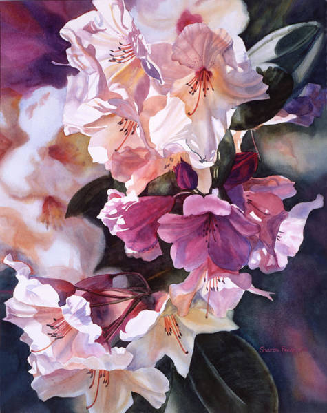 Bronze Painting - Creamy Rhododendron by Sharon Freeman
