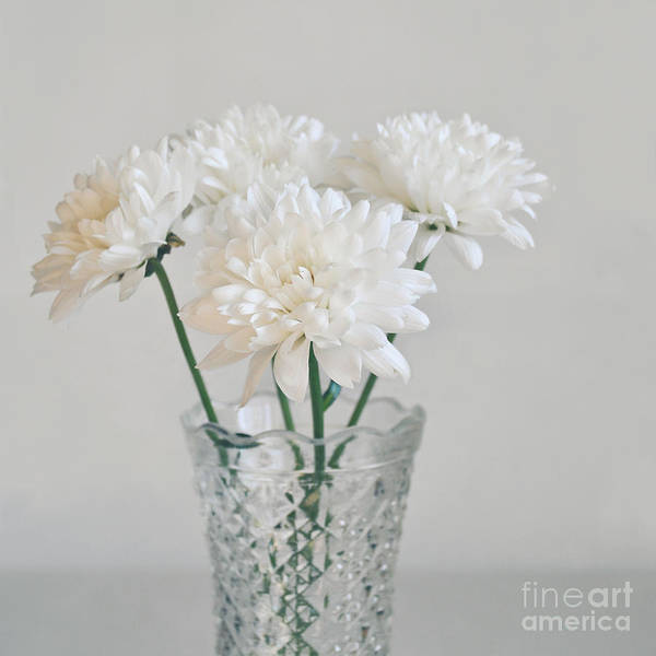 Wall Art - Photograph - Creamy White Flowers In Tall Vase by Lyn Randle