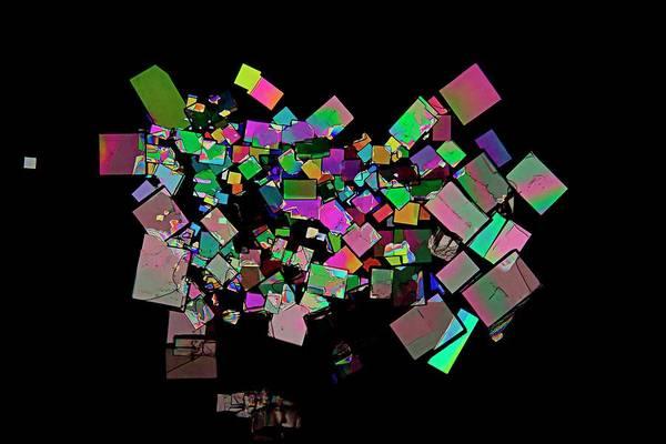 Chronic Wall Art - Photograph - Creatinine Crystals by Antonio Romero/science Photo Library