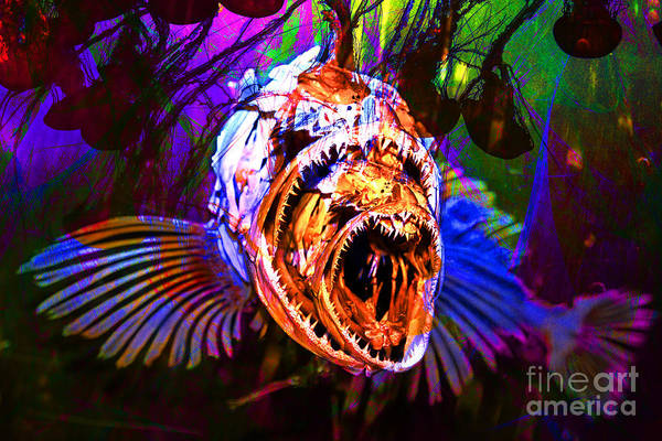 Photograph - Creatures Of The Deep - Fear No Fish 5d24799 V2 by Wingsdomain Art and Photography