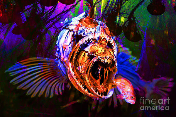 Photograph - Creatures Of The Deep - Fear No Fish 5d24799 by Wingsdomain Art and Photography