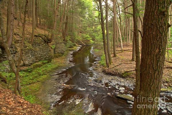 Photograph - Creek Below Hackers Falls by Adam Jewell