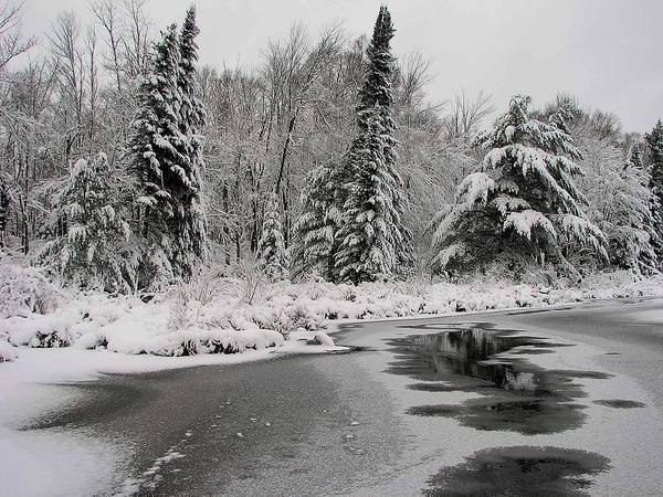 Photograph - Boot Creek Ice Over by Dale Kauzlaric