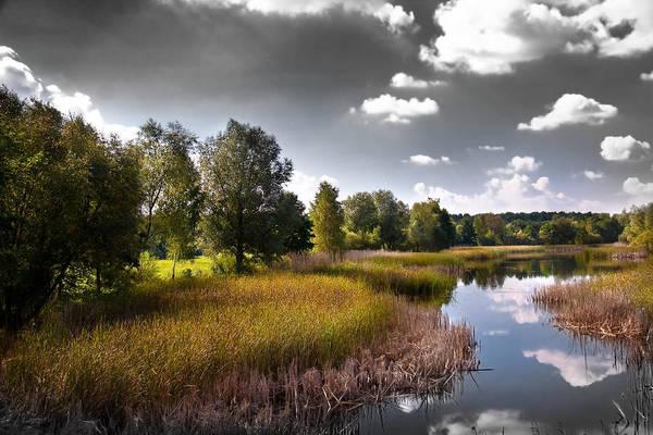 Photograph - Creek In The Garden by Danuta Antas Wozniewska