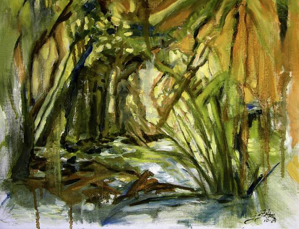 Creek Levels With Overhang Art Print