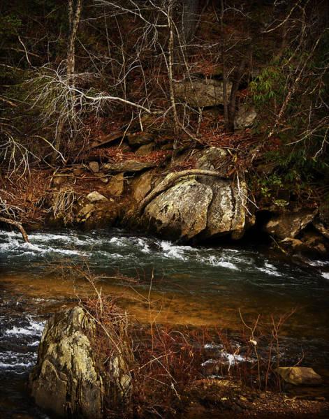 Photograph - Creek by Mario Celzner